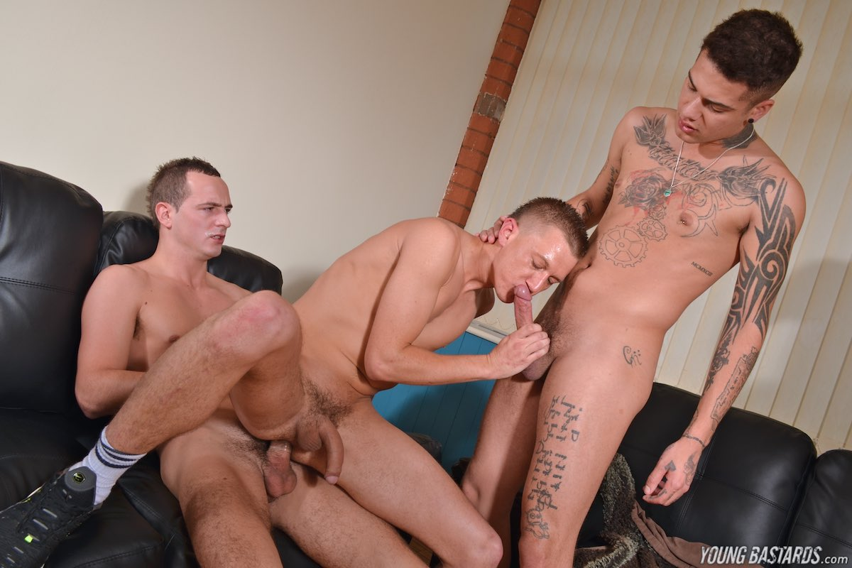 Aj Alexander And Josh Jared Enjoy Blowjob